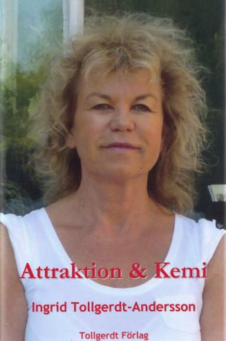 attraktion-kemi-0011